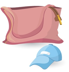 Pink bag and blue hat vector image vector image