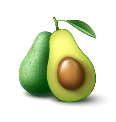 whole and half cut avocado vector image