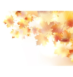 Autumn background with leaves plus EPS10 vector image vector image
