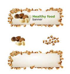 set banners with pine nuts and ground nuts vector image vector image