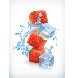 Strawberry ice cubes and a splash of water vector