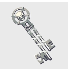 Double silver key with pirate symbols cartoon vector image vector image