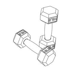 dumbbells - line sketch art vector image