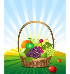 fruit basket in the meadow vector image