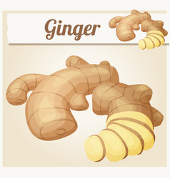 Ginger root cartoon icon vector