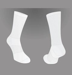 two white socks vector image