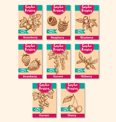 disocunt price tags for farm berries vector image