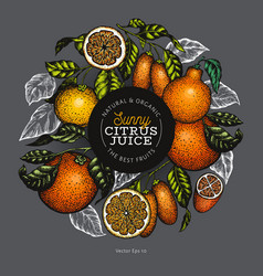 Citrus fruits design templete hand drawn colour vector