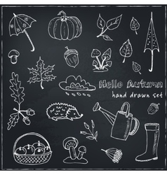 Cute hand drawn autumn set vector