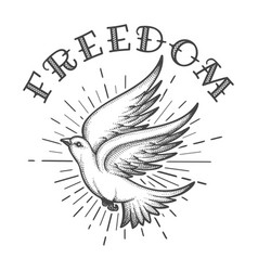 dove in sky and lettering freedom tattoo vector image