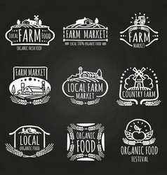 Farm market and food festival hand drawn vector