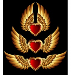 Heart forms with golden wings vector