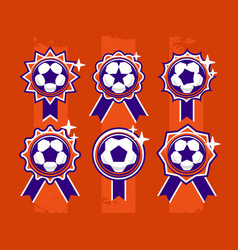 modern professional set of balls emblem and vector image