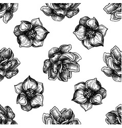 Seamless pattern with black and white magnolia vector