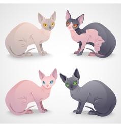 Sphynx cats vector