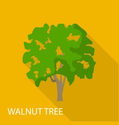 Walnut tree icon flat style vector