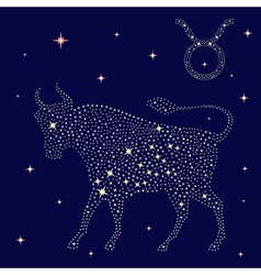 Zodiac sign Taurus on the starry sky vector image