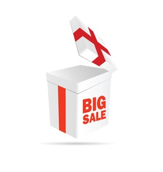 big sale sign on package color vector image