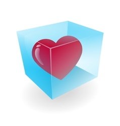 Heart in the ice cube vector image