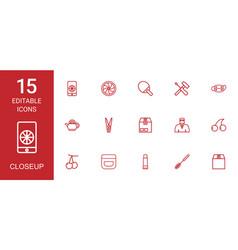 15 closeup icons vector image