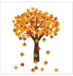 Autumn maple tree leaves on bright background EPS vector image vector image
