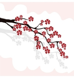branch of cherry blossoms sakura with burgundy vector image