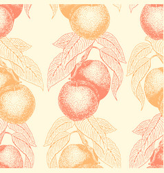 fruits hand drawn seamless pattern with vector image