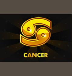 Golden astrology signs on black background zodiac vector