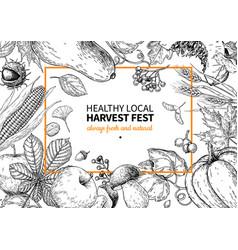 harvest festival hand drawn vintage frame vector image