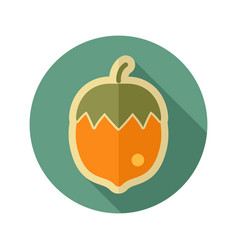 Nut flat icon fruit vector