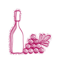 wine bottle with grape fruit vector image