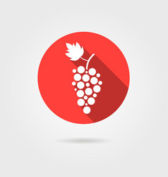 grape icon in red circle with long shadow vector image vector image