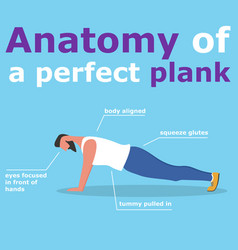 Anatomy of perfect plank banner vector