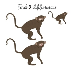 Find differences kids layout for game vervet ape vector image