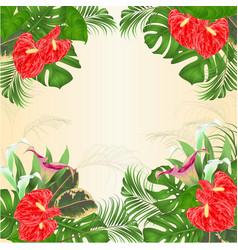 Floral frame background with blooming lilies vector
