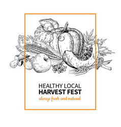 Harvest festival hand drawn vintage vector