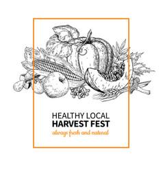 harvest festival hand drawn vintage vector image