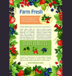 poster of farm fresh berries and fruits vector image