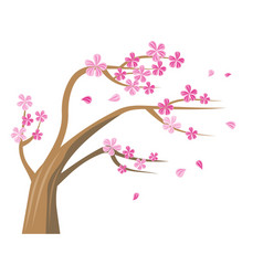 sakura tree with pink flowers vector image