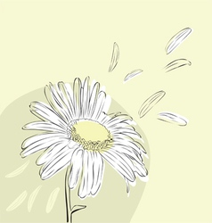 Background with daisies vector