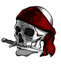skull of a pirate with knife vector image