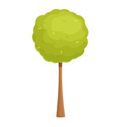 Young park tree icon cartoon hedge vector