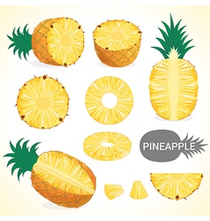 Fruit201509 Set of pineapple in various styles vector image