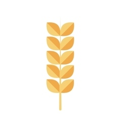 wheat ears healthy food organic icon vector image vector image