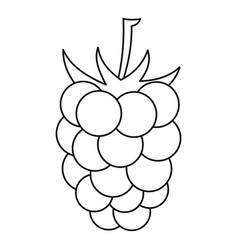 Blackberry icon outline style vector