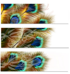 Fashion pattern with colorful feathers vector