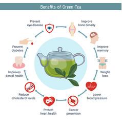 foods infographics green tea foods infographics vector image