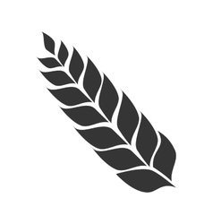 Icon leaf malt beer isolated vector