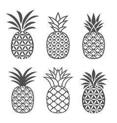 Pineapple icons set outline style vector