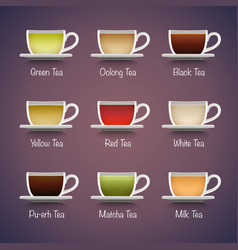 Tea Types Infographics vector